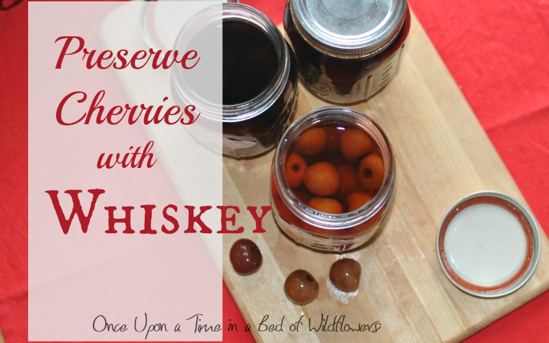 How to Preserve Cherries in Whiskey