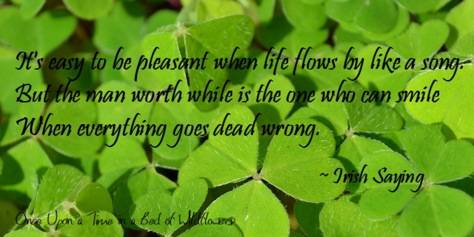 Irish Saying // Once Upon a Time in a Bed of Wildflowers