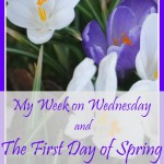 My Week on Wednesday and the First Day of Spring // Once Upon a Time in a Bed of Wildflowers