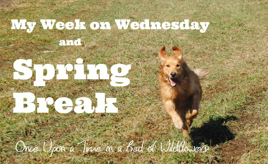 My Week on Wednesday and Spring Break // Once Upon a Time in a Bed of WIldflowers