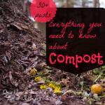 Compost sq