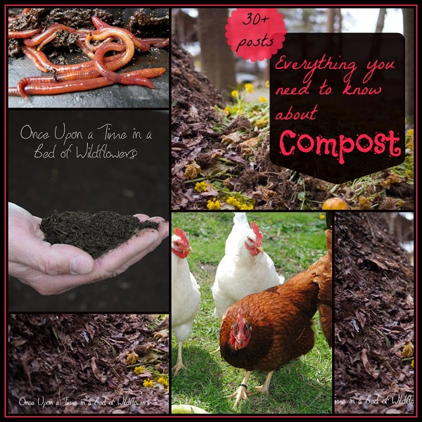 Everything You Need to Know About Composting (A My Week on Wednesday Post) // Once Upon a Time in a Bed of WIldflowers