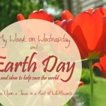 Personally I believe that EVERY day should be Earth Day. Here are some ideas and tips to help you save the world // Once Upon a Time in a Bed of Wildflowers