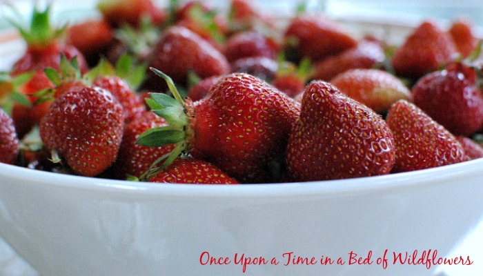 Looking for a way to use strawberries this season? Check out these 26 amazing strawberry recipes collected by Once Upon a Time in a Bed of Wildflowers -- plus preserving ideas and growing tips, too!