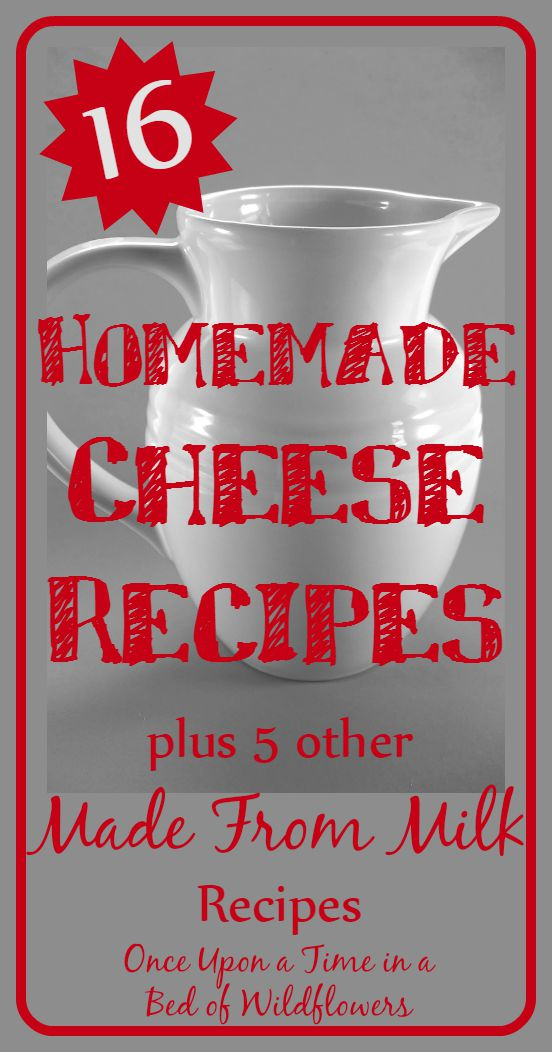 It's easy to make delicious homemade cheeses! Check out these cheese recipes, plus a few more made from milk recipes // Once Upon a Time in a Bed of Wildflowers