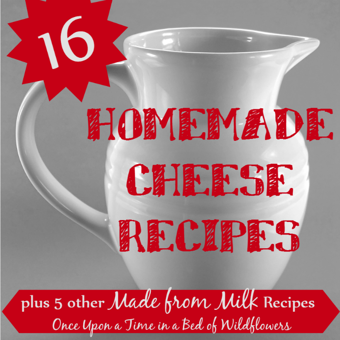 Cheese recipes sq