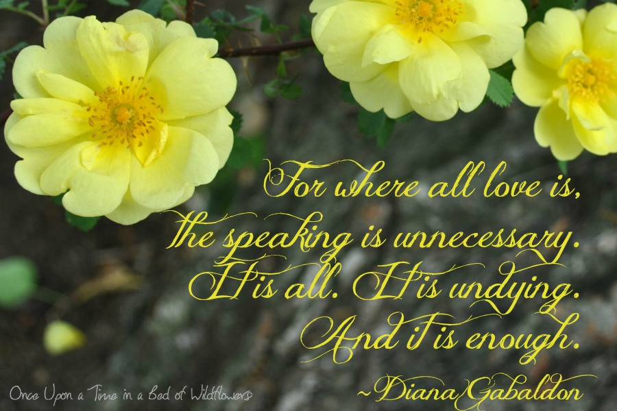 Quote of the Week // Once Upon a Time in a Bed of Wildflowers