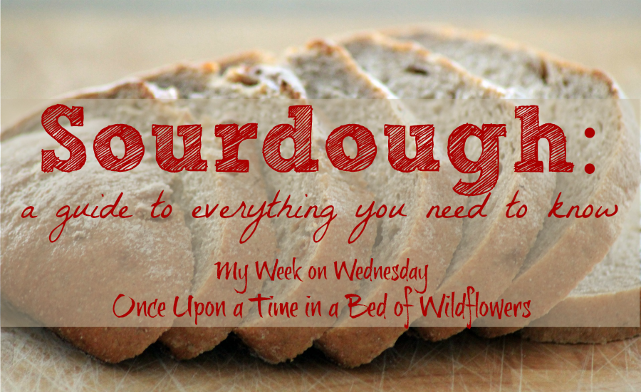 Sourdough: A guide to everything you need to know // Once Upon a Time in a Bed of Wildflowers