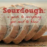 Sourdough sq