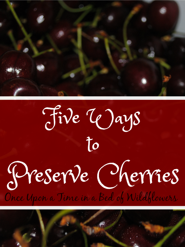 Too many cherries? Learn five easy ways to preserve them! Plus find out how to make cherry pit syrup from the leftover pits!