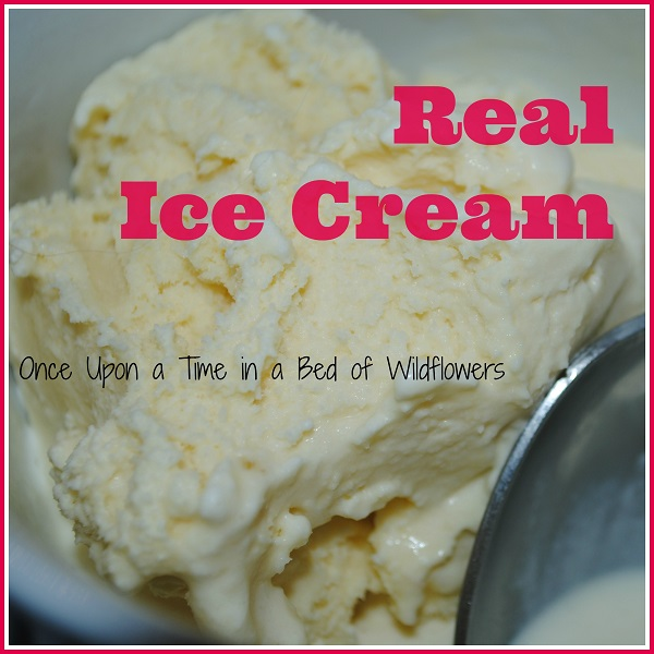 Real Ice Cream without any added flavor. Delicious! via Once Upon a Time in a Bed of Wildflowers