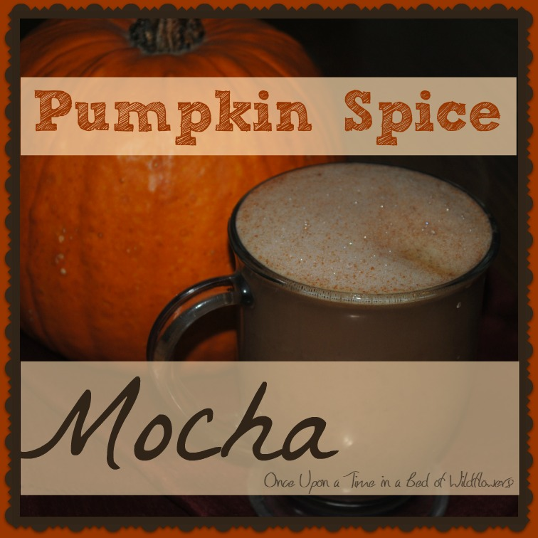 This will wake you up in the morning! Pumpkin Spice Mocha! A chocolate coffee treat just right for frosty fall mornings! || Once Upon a Time in a Bed of Wildflowers