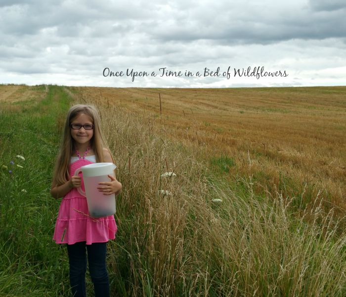 From the Farm Blog Hop//Once Upon a Time in a Bed of Wildflowers